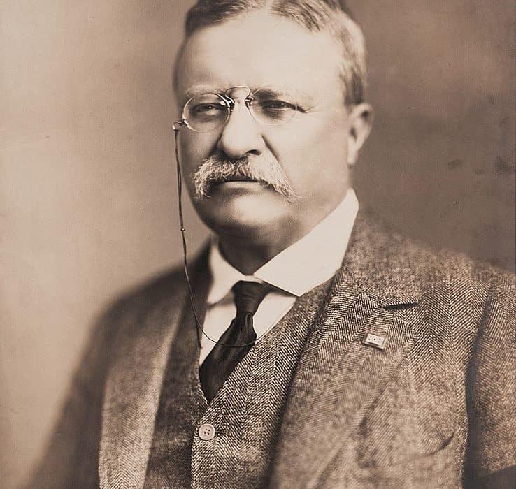 Theodore Roosevelt Leadership Profile